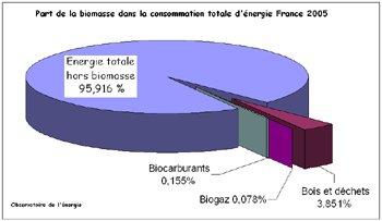 biomasse7