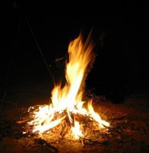 La biomasse dans Approfondissons pasorapafeu22